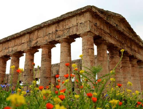 Escursione a Segesta, Erice, Marsala e Saline